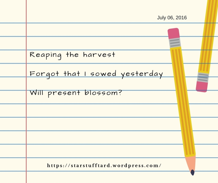 Reaping the harvestWhich I forgot sowed yesterdayWill present blossom- 1 (1)